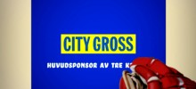 Citygross Hockey web